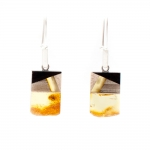 Earrings Amberwood SM1215E